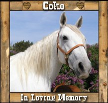 In Loving Memory of our Beloved Coke (Miss Coke T Missy)